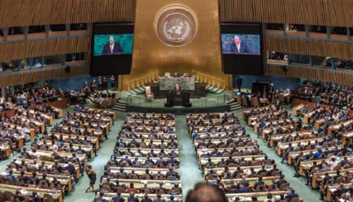 « Loi Tshiani » : Les Nations unies s'en mêlent par la Monusco (Vidéo)